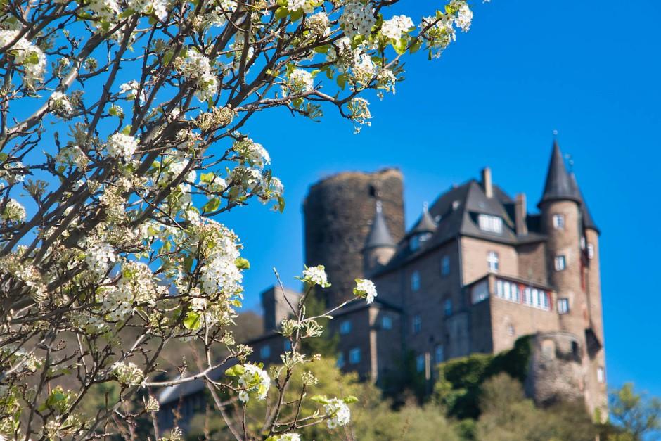 Burg Katz - nicht zu verwechseln mit der Burg Maus.