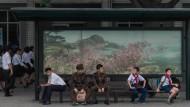 Schüler, Arbeiter, Soldat: In Nordkoreas Hauptstadt Pjöngjang sind fast alle mit dem Bus unterwegs.