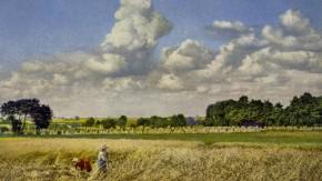 Sommerfelder, soweit das Auge reicht. Die gekonnte Farbillusion ist eine sogenannte Photochromie aus dem Hause Nenke & Ostermaier um 1900.