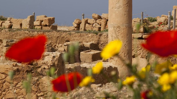 Zypern Reisen Aktuell News Und Informationen Der Faz Zum Thema