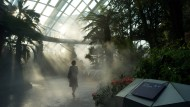 Zwei spektakuläre Gewächshäuser erfinden den botanischen Garten neu - hier nebelt es im Cloud Forest.