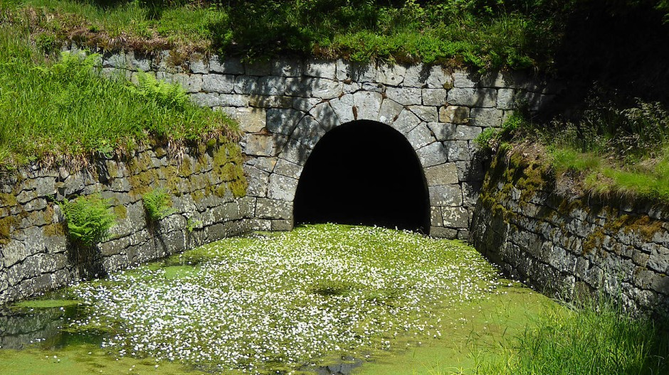 Ohne die Kraft des Wassers konnten die Menschen einst die Bodenschätze des Harzes nicht heben. Deswegen erfanden sie ein ausgeklügeltes System an Kanälen und Tunneln.