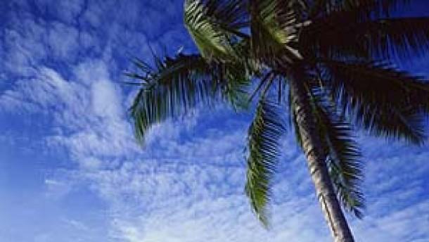 Rückkehr auf die verlorenen Inseln