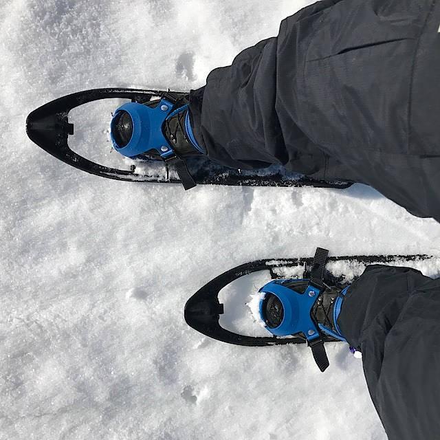 Spielarten des Wintersports: Unterwegs auf Schneeschuhen
