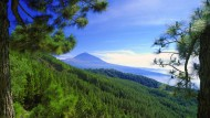 Der Nationalpark rund um den Vulkan Teide ist ein ruhiges Eckchen auf Teneriffa. Daran wird sich wohl auch durch die Vulkanrouten nichts ändern.