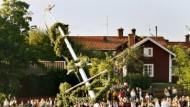 Alle packen an: Der Mittsommerbaum wird in einem Dorf in Leksand aufgestellt