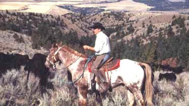 Vier Gäste-Ranches im Wilden Westen