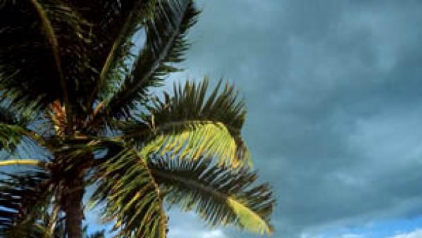Sprachkurse in exotischen Ländern: Vokabeln pauken im Dschungel und am Palmenstrand