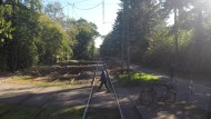 04: Waldfriedhof Goldstein - Waldau