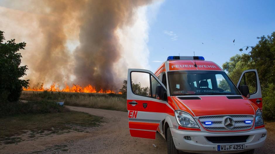 Teure Alternative: Statt der Freiwillige zu zwangsrekrutieren, könnten auch hauptberufliche Feuerwehrleute ausgebildet werden.