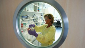 Hessen bisher frei von Schweinegrippe - Impfstoff in Arbeit