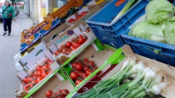Gemüsebauern klagen über starke Einbußen