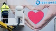 Werbung für Organspende: Etwa zwei Drittel der Deutschen sind bereit, nach ihrem Tod Organe zu spenden. Doch die wenigsten halten dies schriftlich fest.