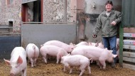 Immer mehr Ökobauern in Hessen