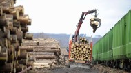 Holztransporter reißt Fußgängerbrücke mit sich