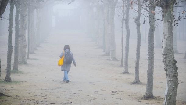 Zu warmes Jahr geht mit Schmuddelwetter zu Ende