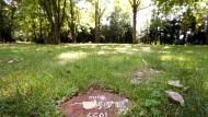 Grabplatte für Urnengrab in Frankfurt