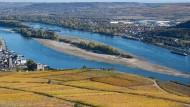 Sandbank: Monatelange Trockenheit und ausbleibende Niederschläge haben den Wasserstand des Rheins in Rüdesheim auf ein Minimum schrumpfen lassen.