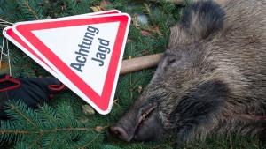 Ministerin Hinz bläst zur Jagd auf Wildschweine
