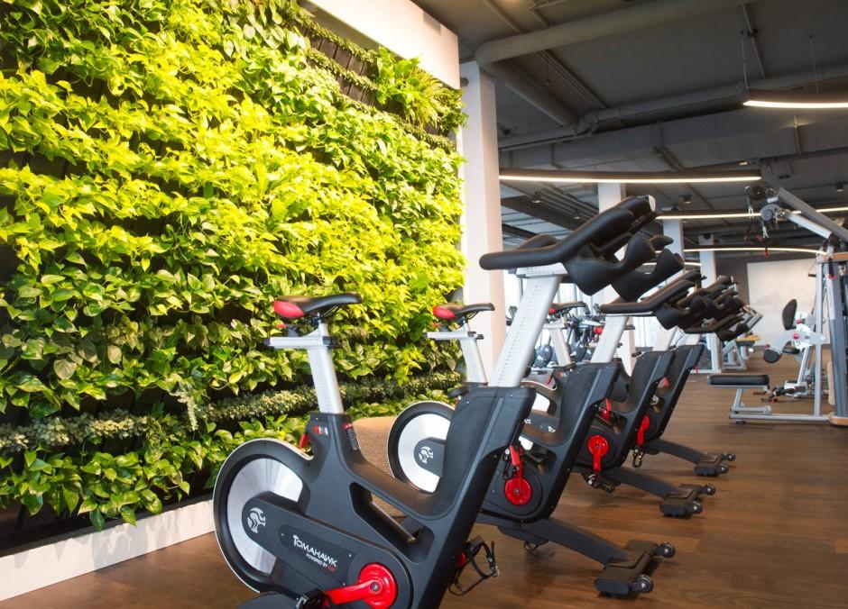 fitness studios in frankfurt sch ner schwitzen im premium. Black Bedroom Furniture Sets. Home Design Ideas
