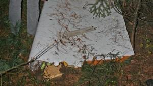 Offenbar Flugzeugteil in Stadtwald gefunden