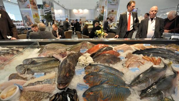Fisch mit gutem Gewissen