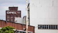 Heimische Firmen spüren Boykottfolgen