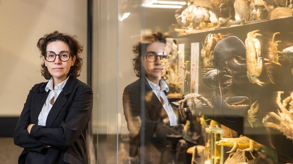 Will die Forschung auch in die Gesellschaft tragen: die neue Senckenberg-Direktorin Franzen