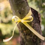 Erntezeit: Von Bäumen mit gelben Bändern können Passanten das Obst holen