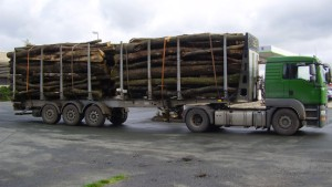 Holzlaster mit 20 Tonnen Übergewicht gestoppt
