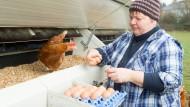 Mein Ei: Anette Hildmann beim Ernten