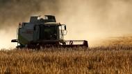 Hessens Bauern trotz Gewinnsprungs weit hinten