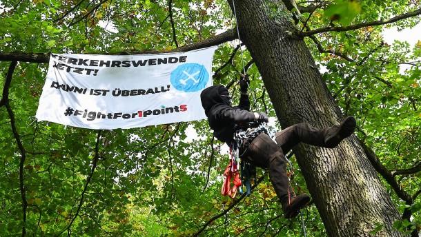 Weitere Bäume in Frankfurt aus Protest besetzt