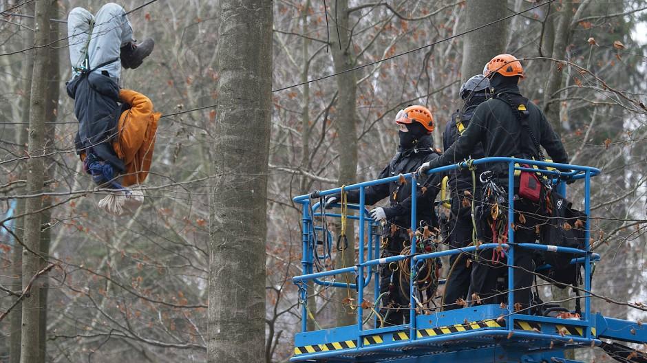 Hängepartie: Aktivist und Polizisten im Dannenröder Forst