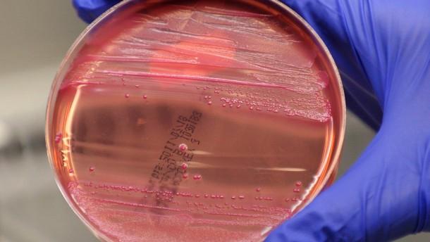 Kantinen reagieren auf EHEC-Infektionen