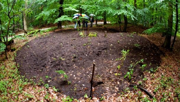 Bakterien und Milben sollen den Bäumen helfen