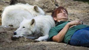 Hanauer Polarwölfin Ayla verendet