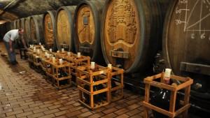 Wo sich Forschung und Weingenuss treffen