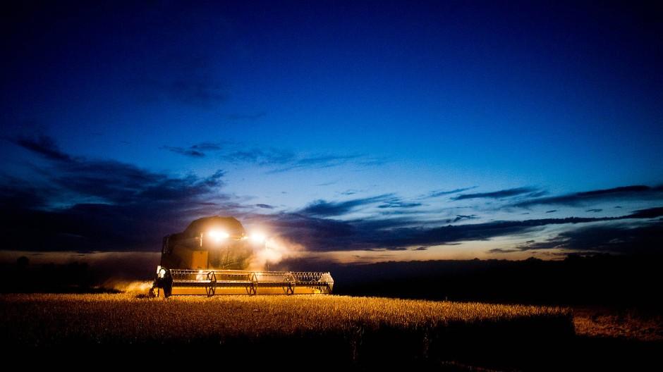 Spätschicht: Ein Landwirt erntet im Mondschein mit einem Mähdrescher ein Weizenfeld