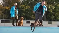 Auf der Pirsch: Jäger Axel Seidemann und seine Gehilfin Ulrike Hamoni und ihre Hunde im Frankfurter Brentanobad