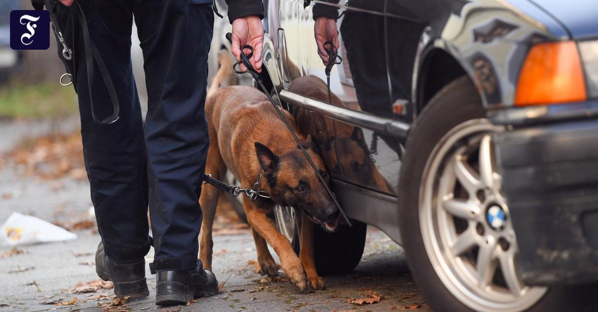 Verkehrspolizei mit Hunden: Zähnefletschen gegen Raser