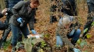 Jäger findet menschlichen Schädel in Waldstück