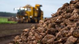 Hessens Bauern verdienen wieder mehr
