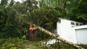 Bundesstraße 8 von Unwetterschäden befreit