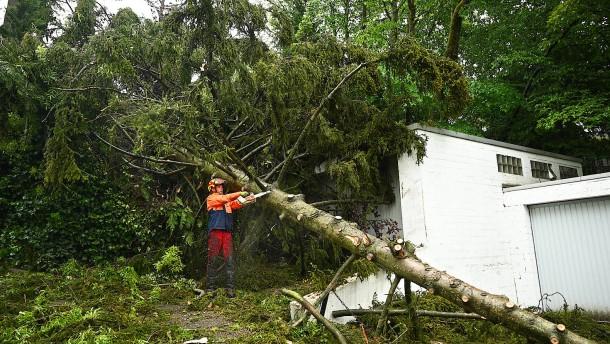 Schäden durch Sturm im Taunus