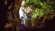 Spurensicherung: Ein Beamter der Kriminalpolizei Friedberg auf dem Grundstück, dessen Besitzer beim Stutzen einer Hecke die Schädelreste fand