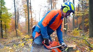 Sechs Prozent mehr für Hessen-Beschäftigte gefordert