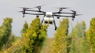 Probeflug:  Die Hochschule Geisenheim testet, ob Drohnen im Weinbau eingesetzt werden können – etwa um Pflanzenschutzmittel zu versprühen.