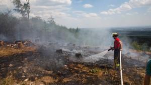 Mehrere Brände in Hessen