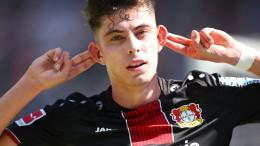 Leverkusen in der Königsklasse